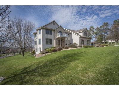 Vestal Single Family Home For Sale: 3139 Knapp Road