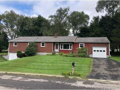 Apalachin Single Family Home For Sale: 35 Brookside Ave