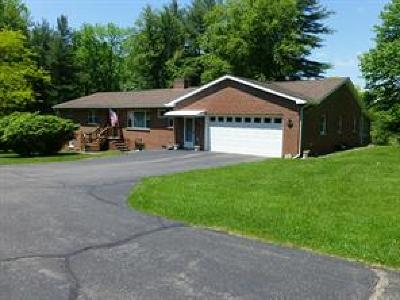 Apalachin Single Family Home For Sale: 583 Tobey Road