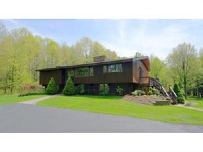 Binghamton Single Family Home For Sale: 34 Stevens Road