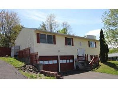 Broome County, Cayuga County, Chenango County, Cortland County, Delaware County, Tioga County, Tompkins County Single Family Home For Sale: 4 Megan Drive