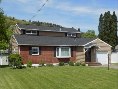 Binghamton Single Family Home For Sale: 3 Lowell Dr.