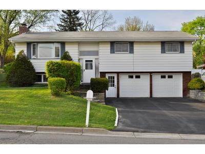 Endwell Single Family Home For Sale: 2917 Northwood Drive
