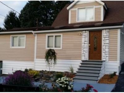 Binghamton Single Family Home For Sale: 243 Park Ave