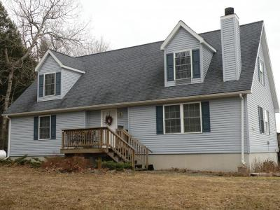 Chenango Forks Single Family Home For Sale: 454 Hotchkiss Rd