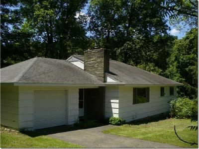 Chenango Forks NY Single Family Home For Sale: $150,000