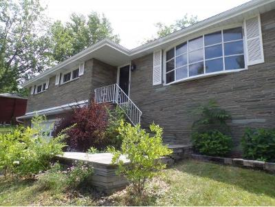 Vestal NY Single Family Home For Sale: $186,900