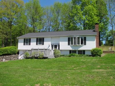 Port Crane NY Single Family Home For Sale: $169,900