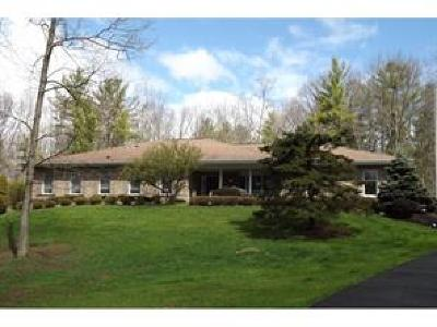 Vestal Single Family Home For Sale: 389 Meeker Road