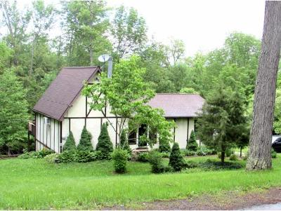 Broome County, Cayuga County, Chenango County, Cortland County, Delaware County, Tioga County, Tompkins County Single Family Home For Sale: 150 King Hill Road