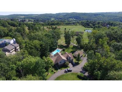 Endwell Single Family Home For Sale: 247 Hillside Terrace