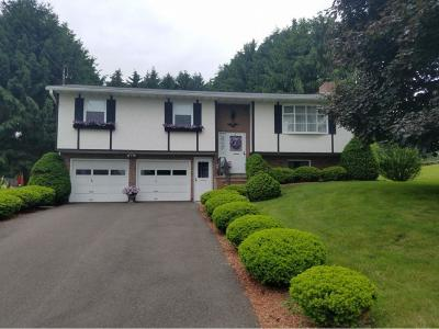 Broome County, Chenango County, Cortland County, Tioga County, Tompkins County Single Family Home For Sale: 1005 McKinley Ave