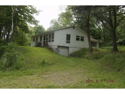 Newark Valley Single Family Home For Sale: 1076 Dr Knapp Rd