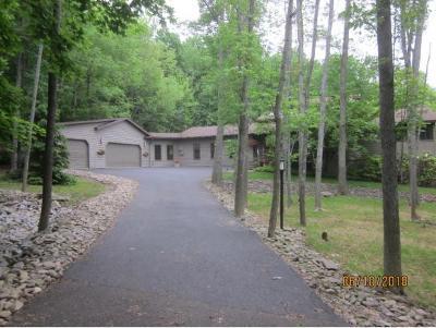 Broome County, Chenango County, Cortland County, Tioga County, Tompkins County Single Family Home For Sale: 3760 Mill St.