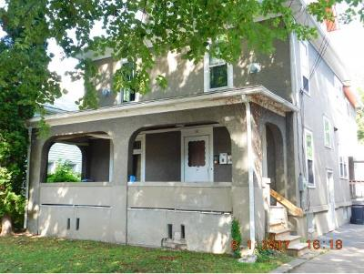 Binghamton Multi Family Home For Sale: 30 St. Cyril Avenue