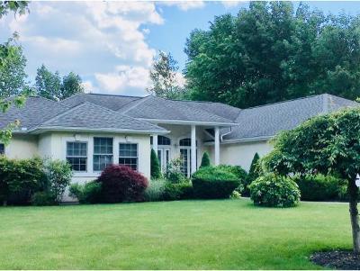 Endicott Single Family Home For Sale: 964 Dante Dr