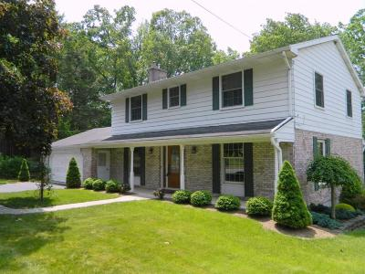 Vestal Single Family Home For Sale: 440 Robin Lane
