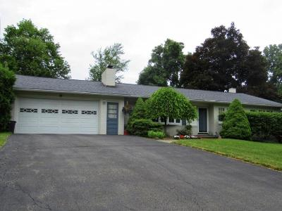 Vestal Single Family Home For Sale: 1353 Hillside Drive