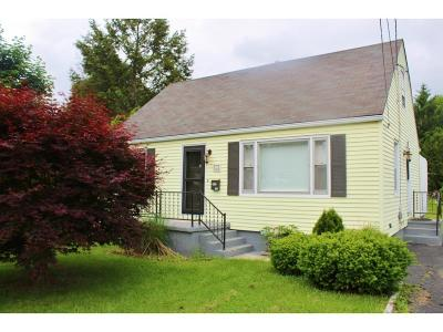 Binghamton Single Family Home For Sale: 43 Riverview Ave