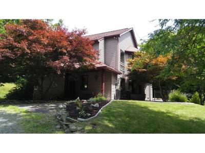 Newark Valley Single Family Home For Sale: 1183 Russell Rd