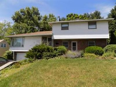 Endwell Single Family Home For Sale: 3639 Lyndale Drive