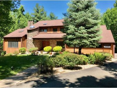 Vestal NY Single Family Home For Sale: $459,000