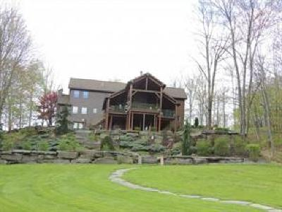 Kirkwood NY Single Family Home For Sale: $549,900