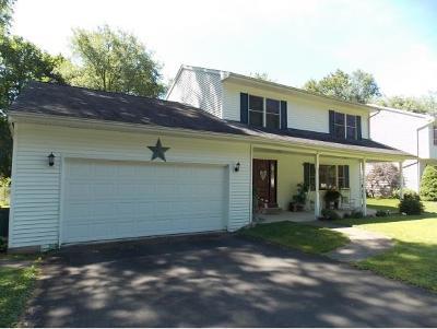 Binghamton Single Family Home For Sale: 13 Wightman Drive