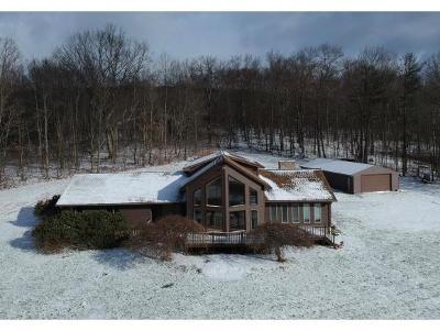 Owego Single Family Home For Sale: 410 Gary Drive