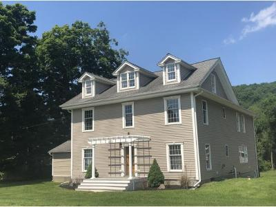 Apalachin Single Family Home For Sale: 2317 Pennsylvania Ave