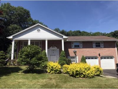 Vestal Single Family Home For Sale: 704 Murray Hill Rd