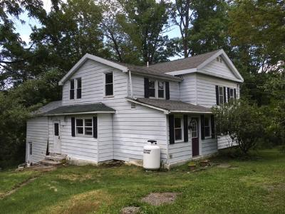Vestal Single Family Home For Sale: 1072 Tracy Creek Rd