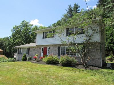 Vestal Single Family Home For Sale: 717 Old Lane Road