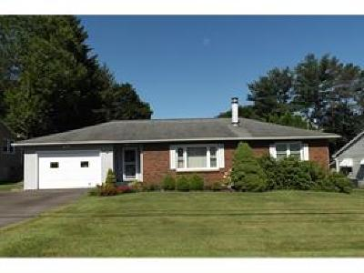 Apalachin Single Family Home For Sale: 24 Frederick