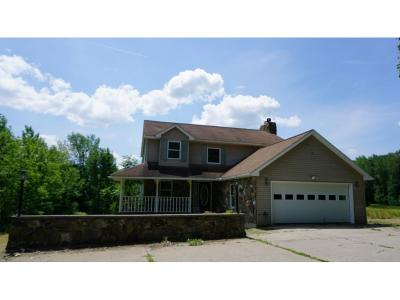 Binghamton Single Family Home For Sale: 2988 Hance Road