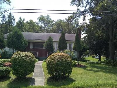 Vestal NY Single Family Home For Sale: $148,000