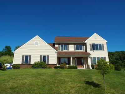 Binghamton Single Family Home For Sale: 14 Country Trail