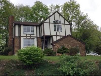 Endicott NY Single Family Home For Sale: $234,900