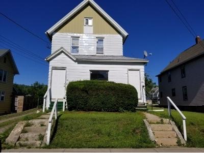 Binghamton Multi Family Home For Sale: 30 Holland Street