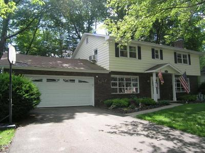 Endwell Single Family Home For Sale: 1008 Forest Road
