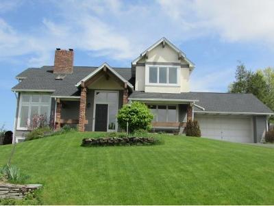 Owego NY Single Family Home For Sale: $289,900