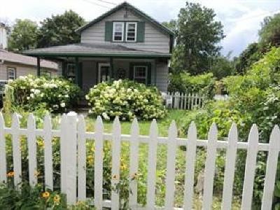 Apalachin Single Family Home For Sale: 876 Main St
