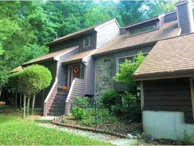 Vestal Single Family Home For Sale: 625 Rano Blvd