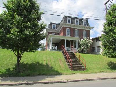 Owego Single Family Home For Sale: 173 North Avenue