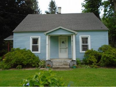 Owego Single Family Home For Sale: 717 McLean Road