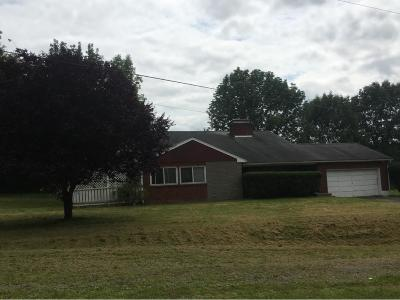 Apalachin Single Family Home For Sale: 736 Tobey