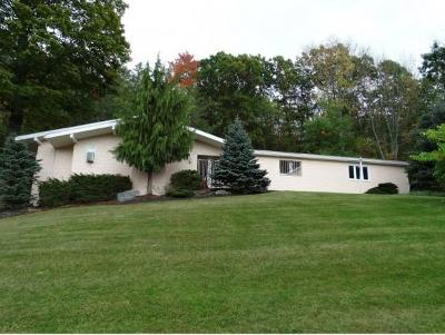 Broome County, Cayuga County, Chenango County, Cortland County, Delaware County, Tioga County, Tompkins County Single Family Home For Sale: 111 E. Hamton Rd.