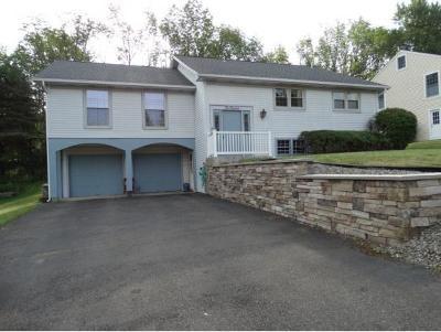 Vestal Single Family Home For Sale: 417 Denal Way