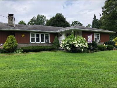 Owego Single Family Home For Sale: 44 Wicks Road
