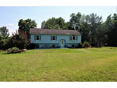 Binghamton Single Family Home For Sale: 691 Dimmock Hill Road